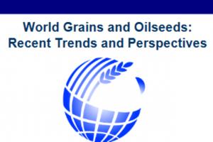 Participă la IGC Grains Conference în 8-9 iunie 2021
