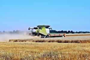 Japonia rămâne fidelă Americii la importul de grâu