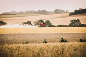 Creșterea competiției pe piața mondială a cerealelor