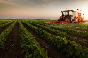 Soia și comerțul global cu semințe oleaginoase
