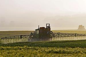 Piața cerealelor devine optimistă după raportul USDA