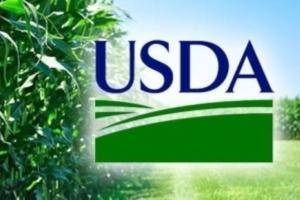Cum au influențat raportele USDA piața cerealelor în ultimul deceniu?