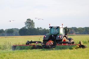 Prețul grâului reduce exportul  la derivatele sale