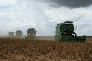 Brazilia a suspendat impozitele pe importul de soia
