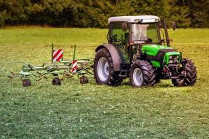 Starea bună a culturilor agricole de iarnă presează piața cerealelor