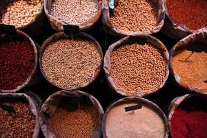 Prețurile cerealelor la bursa CBOT au scăzut astăzi ca urmare a vremii favorabile
