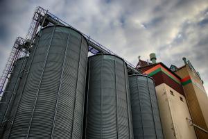 Stocurile de grâu ale Rusiei au crescut în lipsa exporturilor