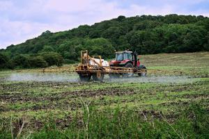 Prețul la porumb și soia crește din cauza dezvoltării slabe a culturilor