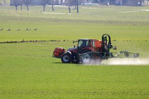 Prețul cerealelor are evoluții mixte în așteptarea raportului USDA