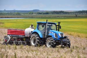 Prețurile cerealelor încă reacționează la raportul USDA