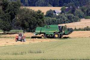 Randamentele bune ale culturilor europene nu ajută piața cerealelor