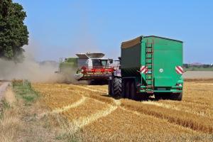 Prețurile scăzute ale cerealelor sporesc importurile
