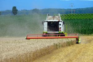 Prețurile la porumb și soia continuă consolidarea