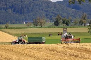 Prețul grâului de la Marea Neagră își păstrează ascensiunea