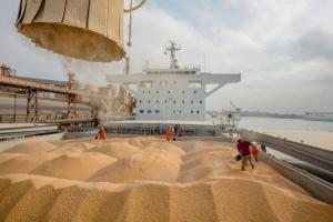 Piața cerealelor va fi condusă de cererea și concurența la export