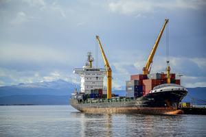 Tările importatoare caută să cumpere grâu de panificație și orz