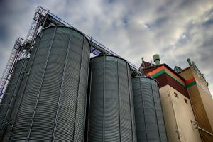 Producția de cereale a SUA rămâne hotărâtoare pentru prețul acestora