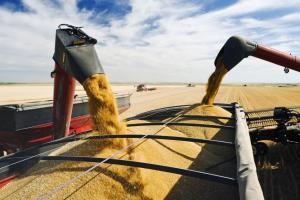 Impactul vremii asupra cerealelor din SUA aduce volatilitate pe piață