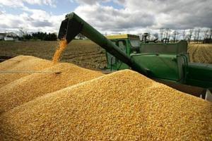 Dolarul mai slab nu impulsionează prețurile cerealelor CBOT