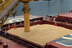 Importatorii asiatici caută să cumpere grâu, grâu furajer și porumb