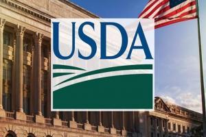 Raportul Wasde este privit cu scepticism de piața cerealelor