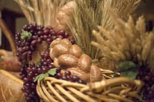 Creșterea grâului și a porumbului continuă pe piața globală