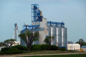 Rusia și exportul de grâu în regiunea Mării Negre