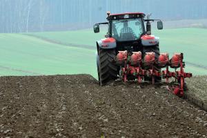 FAO estimează că prețul grâului a crescut cu 41% față de acum un an