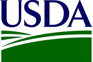 Raportul USDA nu surprinde prea mult piața cerealelor