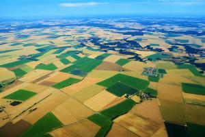 Exportul de grâu din Franța a crescut