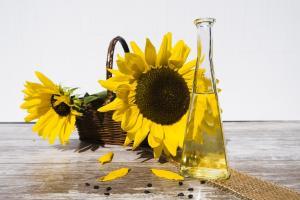 Rusia crește taxele la exportul uleiului de floarea soarelui