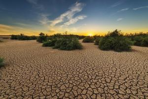 Schimbările climatice și previziunile asupra producției agricole