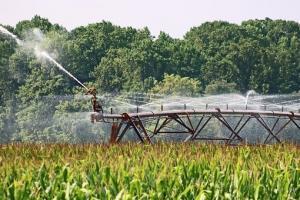 Sistemele de irigații, marea problemă a agriculturii României